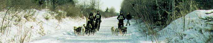 3 Suomi Hills Kennel teams finishing the Mid-Minnesota 150 race